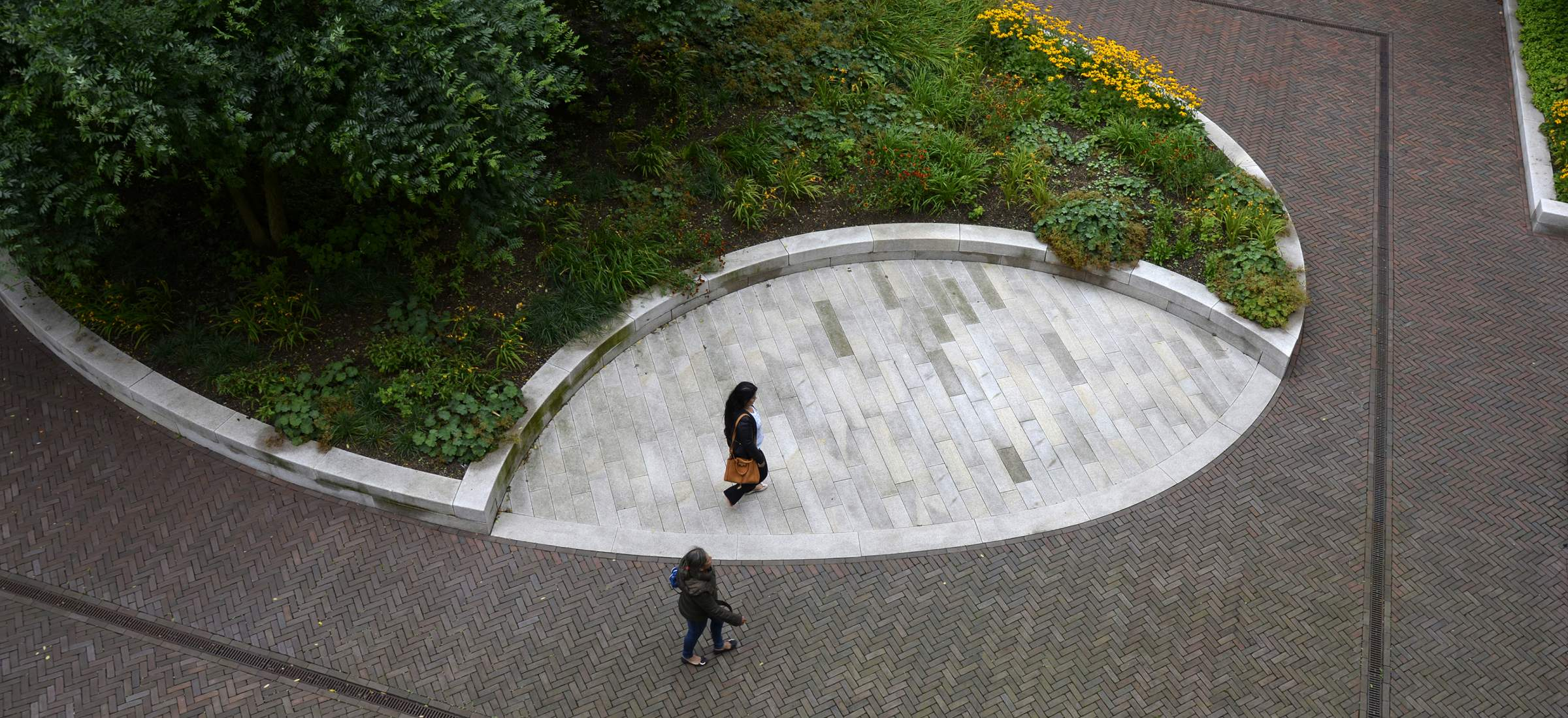 LANDLAB OEVERHOEK courtyard garden yellow from above_photo by Jeroen Bosch