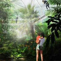 Alternative text Short description of the image used by screen readers and displayed when the image is not loaded. This is important for accessibility. LANDLAB 2019 Hortus Botanicus Amsterdam Three Climate Greenhouse_viz tropics